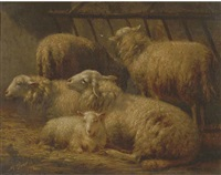 sheep in a stable by albert smets