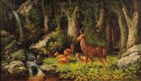 deer in a woodland view by john white allen scott