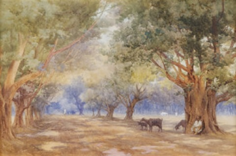 the goat herder by mary georgina barton
