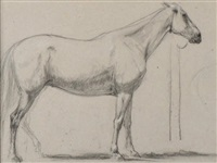 le cheval by eugène fromentin