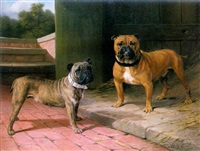 a red bulldog and brindle bulldog by a barn by thomas percy earl