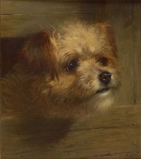 study of a terrier by thomas william earl