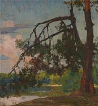 le pin brisé, chiberta à anglet by francois maurice roganeau