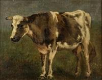 vaca by josé llaneces