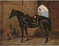 a charger of the 4th royal irish dragoon guards in a castle courtyard with two dogs by collender goldsmith