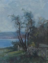 paesaggio sul lago by angelo fiessi