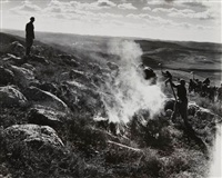 clearing land (défrichement), israël by robert capa