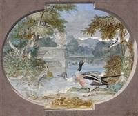 watervogels by sieuwert van der meulen