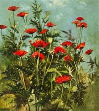 poppys by john alexander