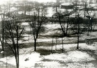 neige à central park, new york by carl van vechten