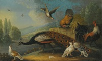 a still life with a peacock, pigeons and chickens in a river landscape by marmaduke cradock