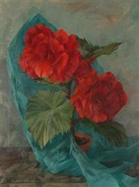 begonias by leonard appelbee