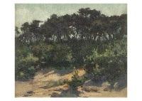 landscape by eisaku wada