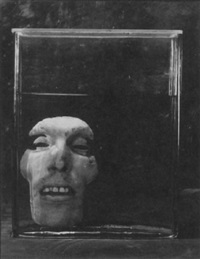 face #1 by gwen akin