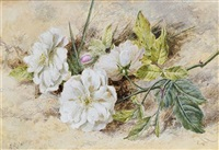 a still life of a dog rose by helen cordelia angell