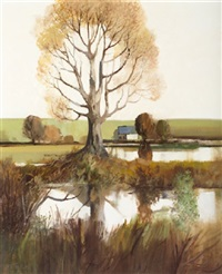wetland reflections, co. monaghan by leo toye