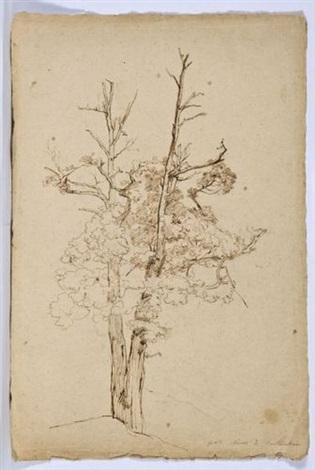 portrait darbre by théodore claude félix caruelle d aligny