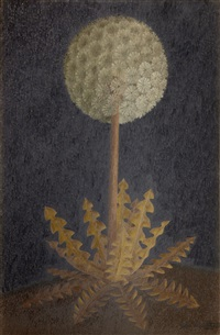 dandelion by john armstrong