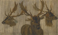 studies of a stag by jan brueghel the younger