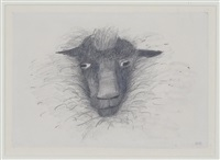 sheep's face by mary newcomb