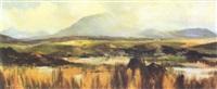 extensive bog landscape by anne tallentire