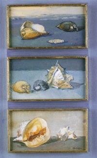 caracol by cristina perez gabrielli