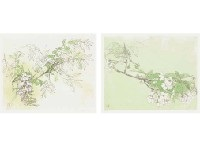 four seasons, six titles (portfolio of 6) (+ 3 other portfolios: set of 4) by toshio tabuchi