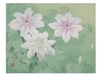flowers by koichi nabatame