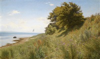 sommertag am meer by ludvig kabell