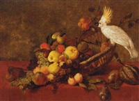 apples, peaches, pears, grapes and other fruit in a basket on a draped table with a cockatoo by james charles ward