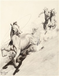 roping a wild one by will james
