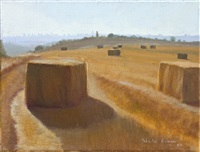 the wheat field by yehuda armoni