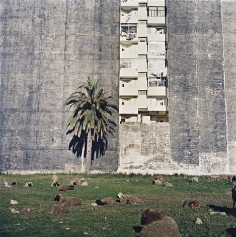 vacant plot, tangier by yto barrada