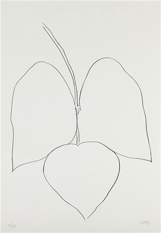 string bean leaves i haricot vert i from suite of plant lithographs by ellsworth kelly