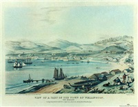 view of a part of the town of wellington by charles heaphy