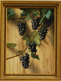 still life with concord grapes by franklin harrison miller