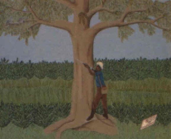 le chasseur doiseaux by philomé obin
