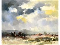 stormy skies by ruth squibb