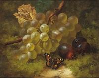 stilleben mit weintrauben, pflaumen und einem schmetterling am waldboden by william harding smith