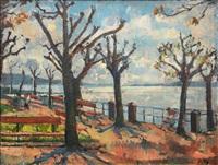 lakeside promenade in upper italy by julius hess