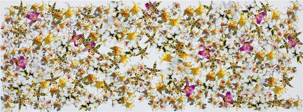 flowers by philippe pasqua