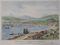 view of a part of the town of wellington new zealand looking towards the south east comprising about one third of the water fro by charles heaphy