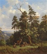 rotwild auf lichtung by wilhelm reinhardt