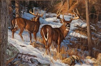 two bucks by dave wade