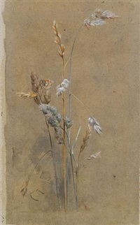 grasses and small heath by edwin john alexander