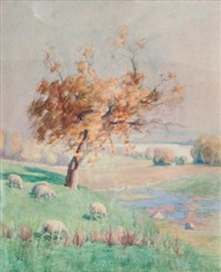grazing sheep, late summer by mary alberta cleland