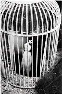 la mode en cage by jeanloup sieff