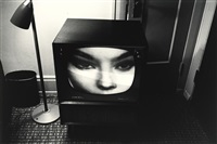 the little screens by lee friedlander