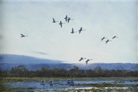 flighting geese by peter scott