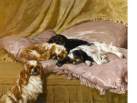 my lady's pets by arthur wardle